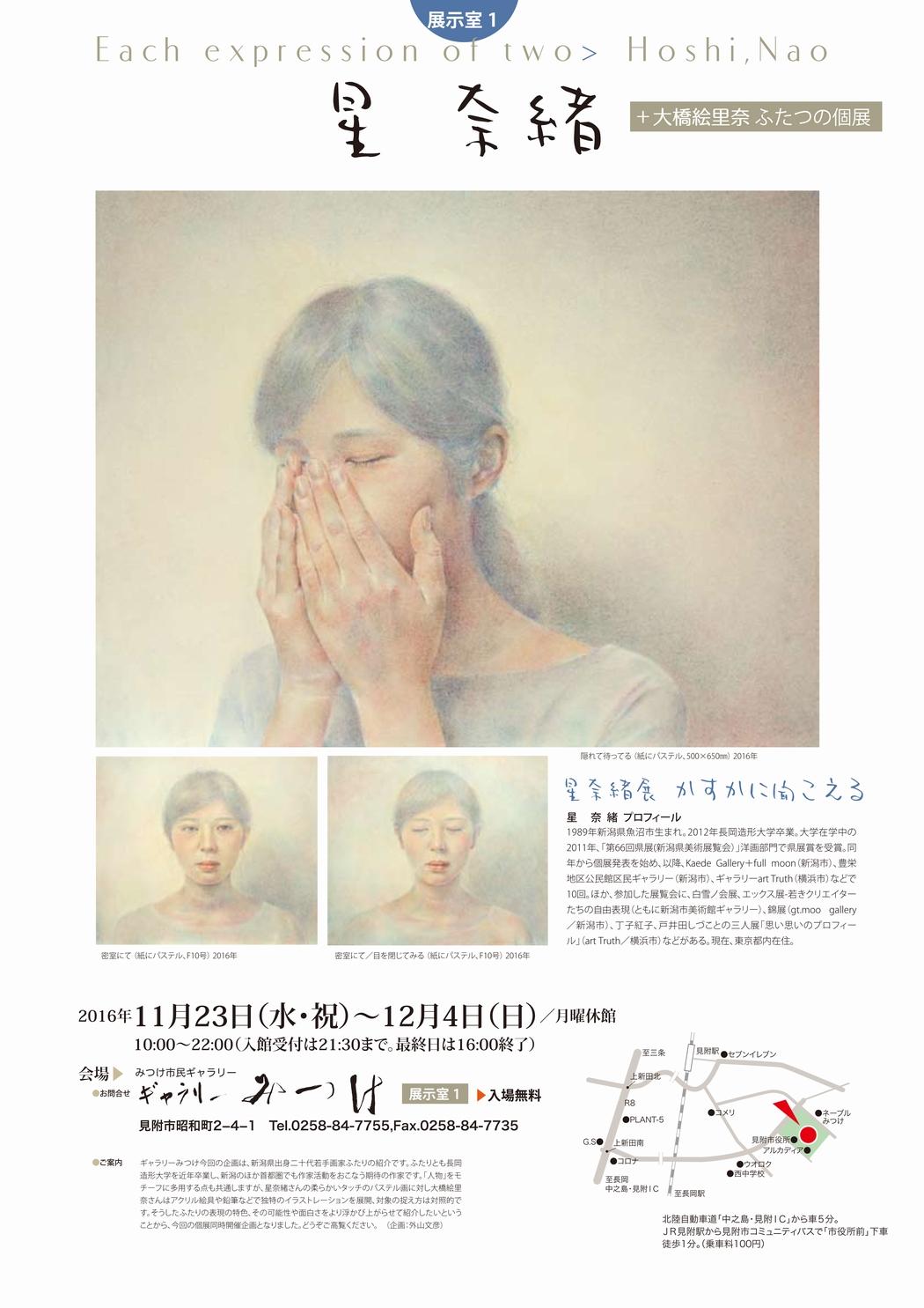 星奈緒展-a