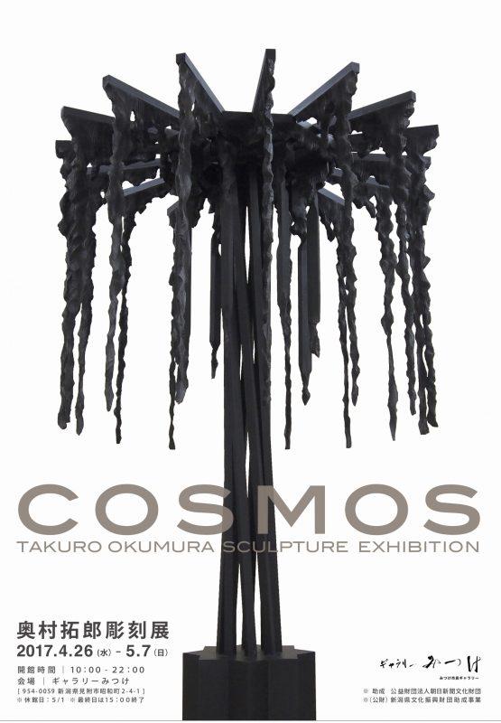 3.29_cosmos2017-a